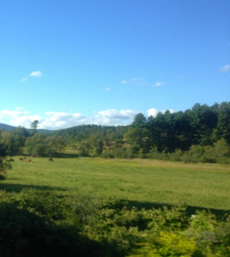 Another beauty day in the Green Mountains of Vermont.