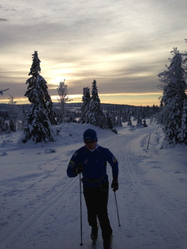 Sjusjøen skiing!