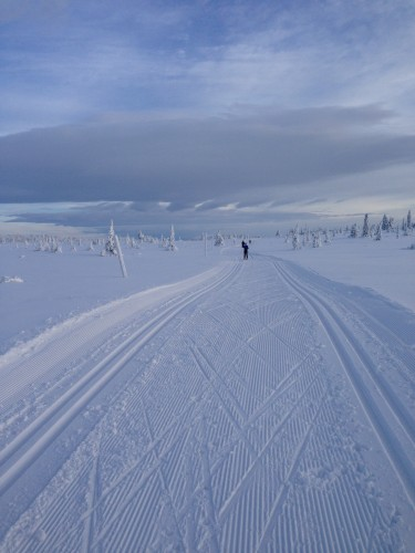 Enjoying the beautiful skiing in Sjusjøen one last time!