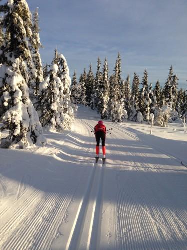 Fun easy skiing.