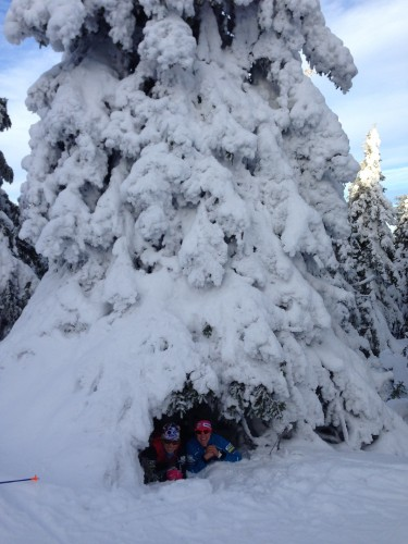 So much snow! Liz and I found a little tree fort.