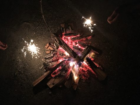 Mallows and sparklers...what a nice night! (photo from Erika Flowers)